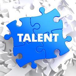 Talent Development - Bercume Associates